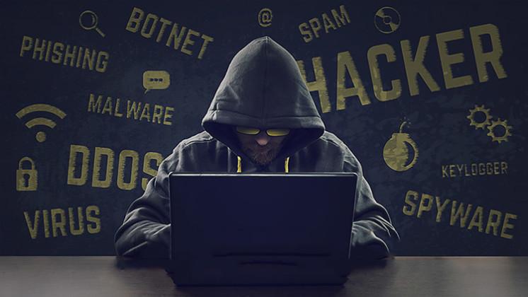 Sites piratés en 2016